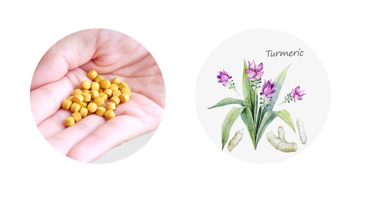 3種のウコン粒