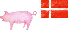 豚プラセンタエキス末使用