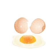 卵黄のすごいパワー